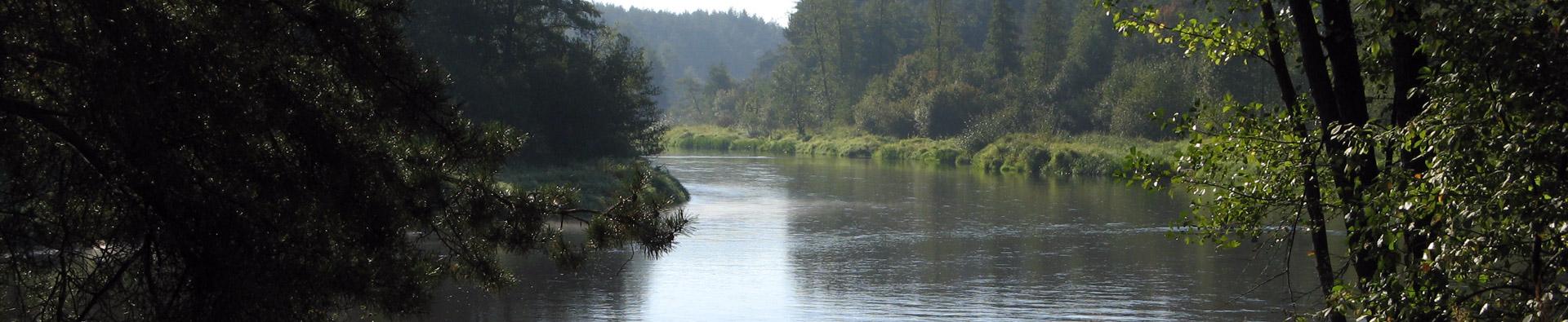 Piękna dolina rzeki Pilicy